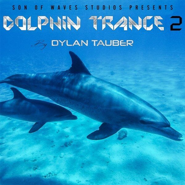 Cover art for Dolphin Trance 2